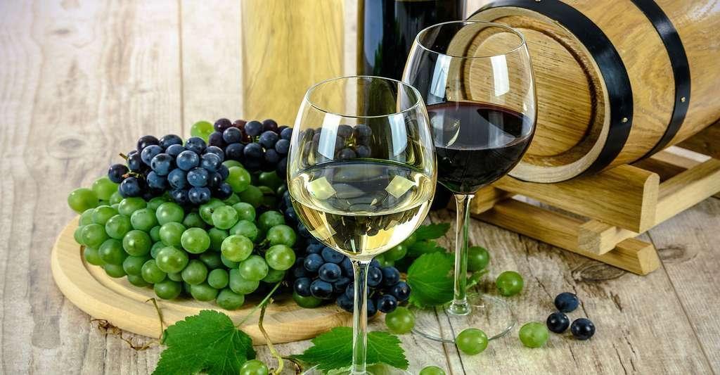 Image result for le vin rouge